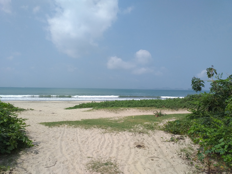 Life's a beach ... naturally